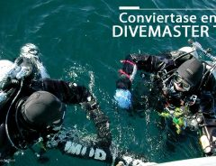 Divemaster Técnico TDI